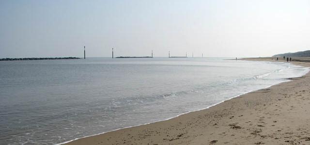 dog friendly beaches in Norfolk - Sea palling