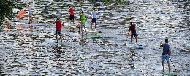 Stand Up Paddle Boarding in Norfolk - Norfolk Outdoor Adventures