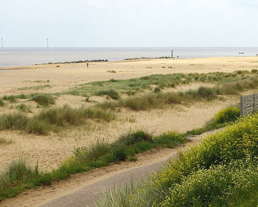 dog friendly beaches in Norfolk - Caister-on-Sea