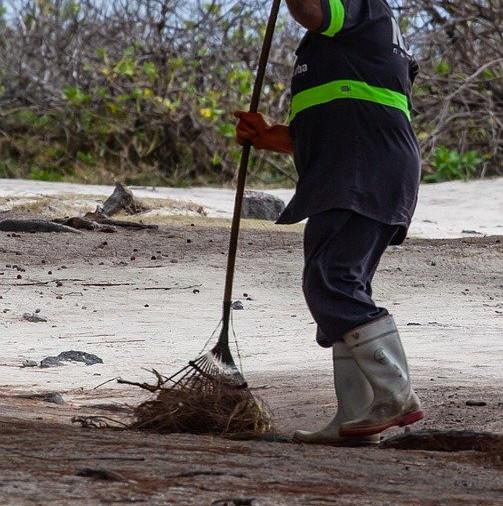yard rake at work