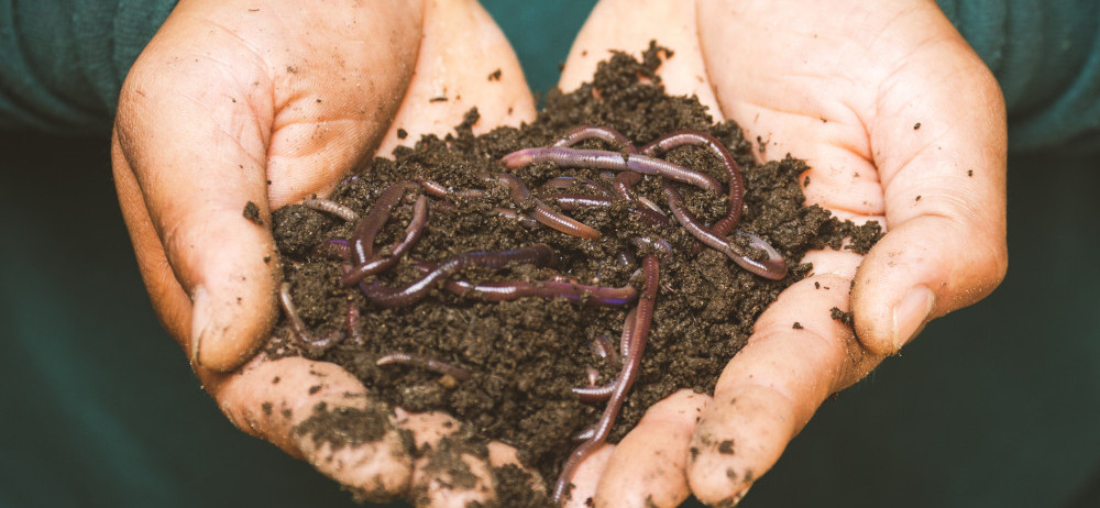 best garden soil amendments