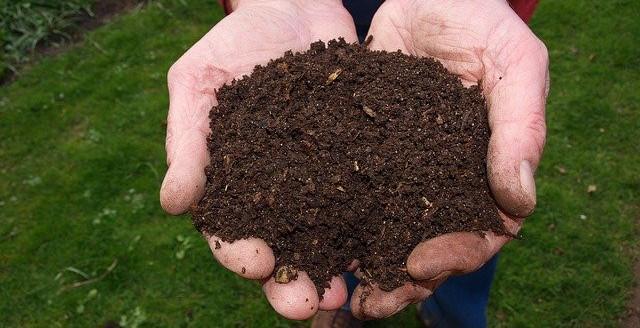 natural fertilizer healthy soil