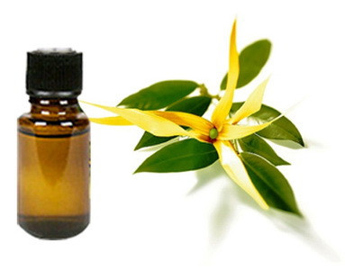 Cananga essential oil