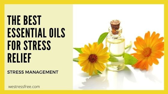 The Best Essential Oils for Stress Relief