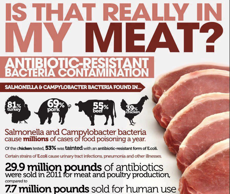 What is plant based food - meat dangers