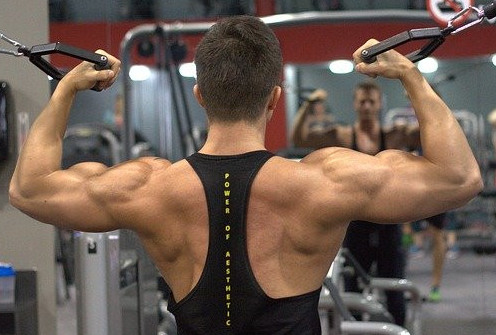 How To Build The Back Muscles