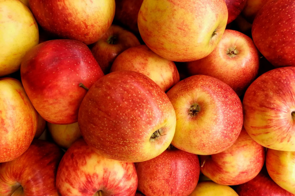the best fruits for weight loss-apples