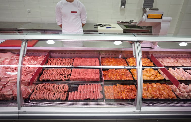 What is plant based food - meat products