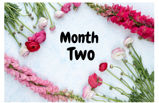 Month-Two-Pretty-Flowers