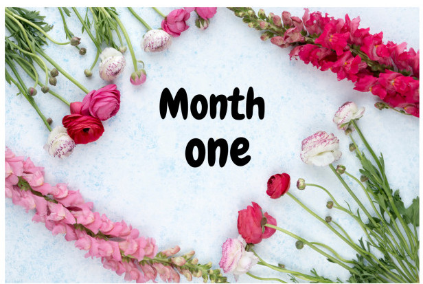 Month-One-Pretty-Flowers