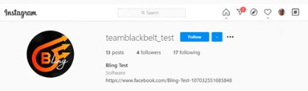 Team Blackbelts Instagram account
