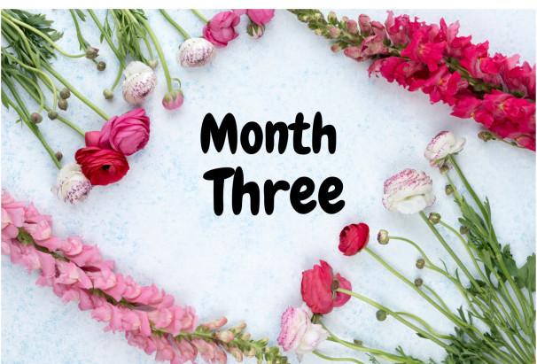 Month-Three-Pretty-Flowers