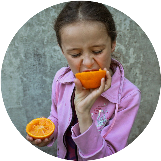 A young girl eating an orange