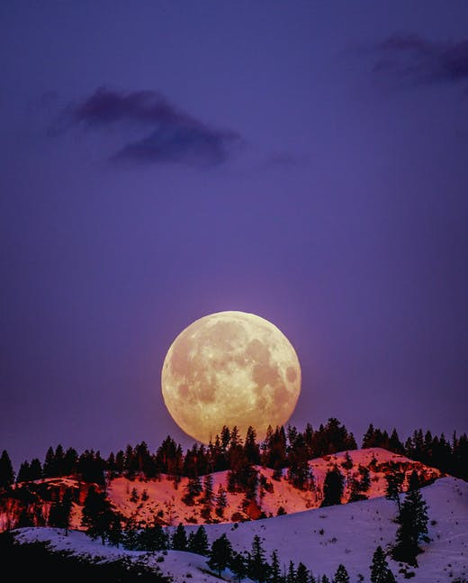 A full moon behind a snow-covered moutain slope surrounded by fir trees