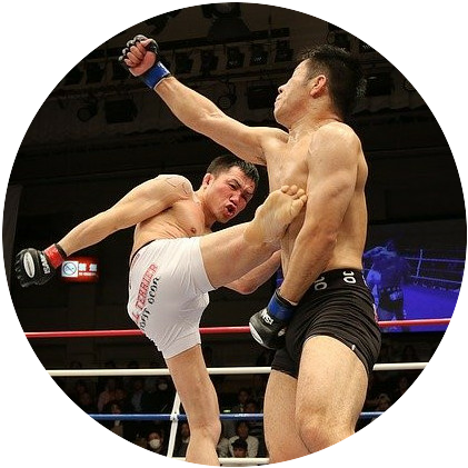 Two men fighting MMA-style inside a ring