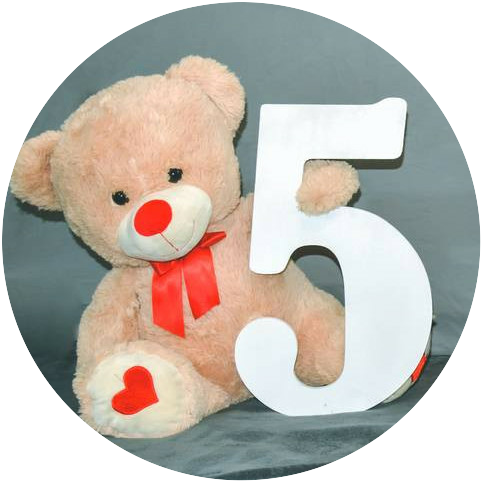 A teddy bear holding the number 5