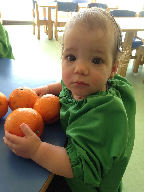 A toddler sitting at a table holding onto a number of oranges