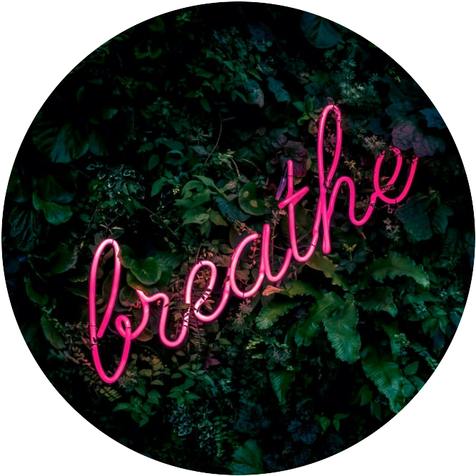 An Illuminated pink sign spelling the word breathe placed on top of green leaves