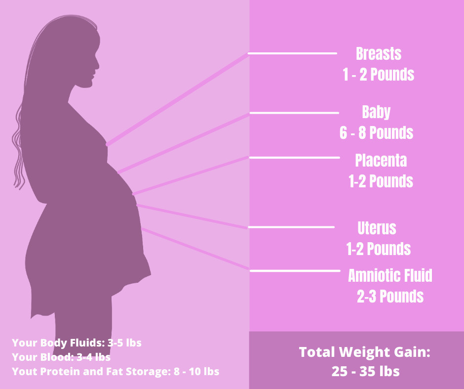 healthy weight gain for pregnancy - where does baby weight come from