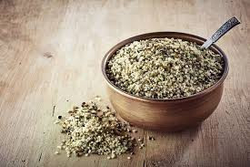 what is hemp protein