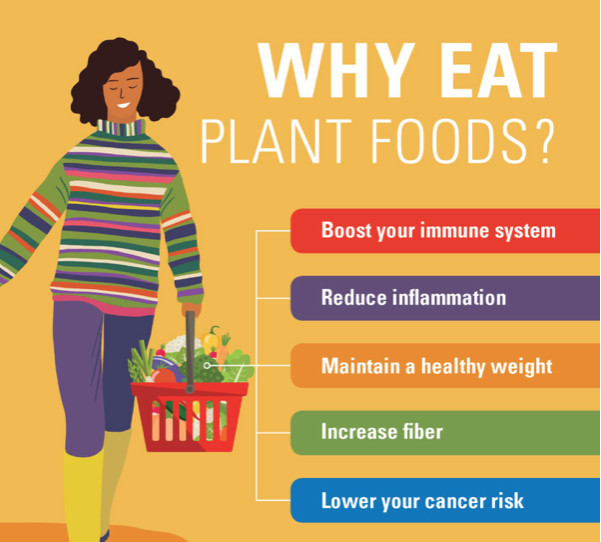 what is in a plant based diet - why eat plant foods graphic