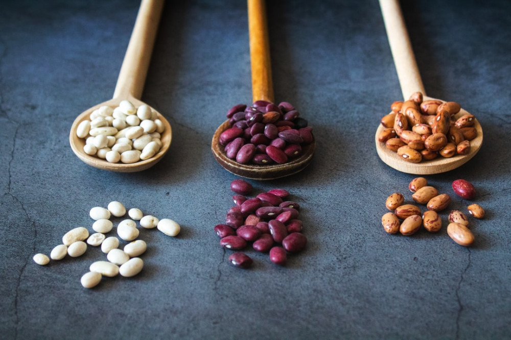 what is in a plant based diet - beans on spoon