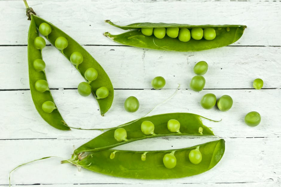 what is pea protein - pea pods