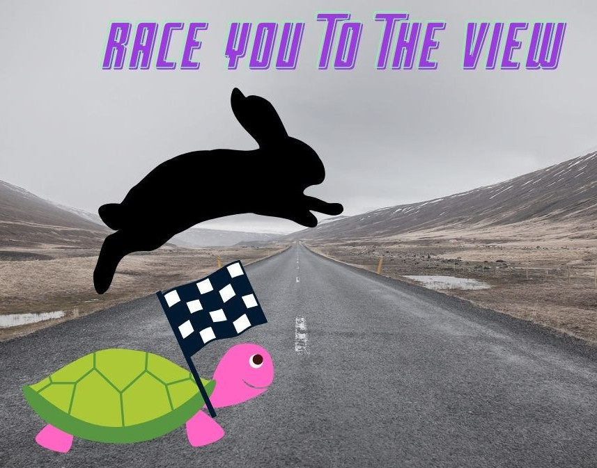 Race to the view