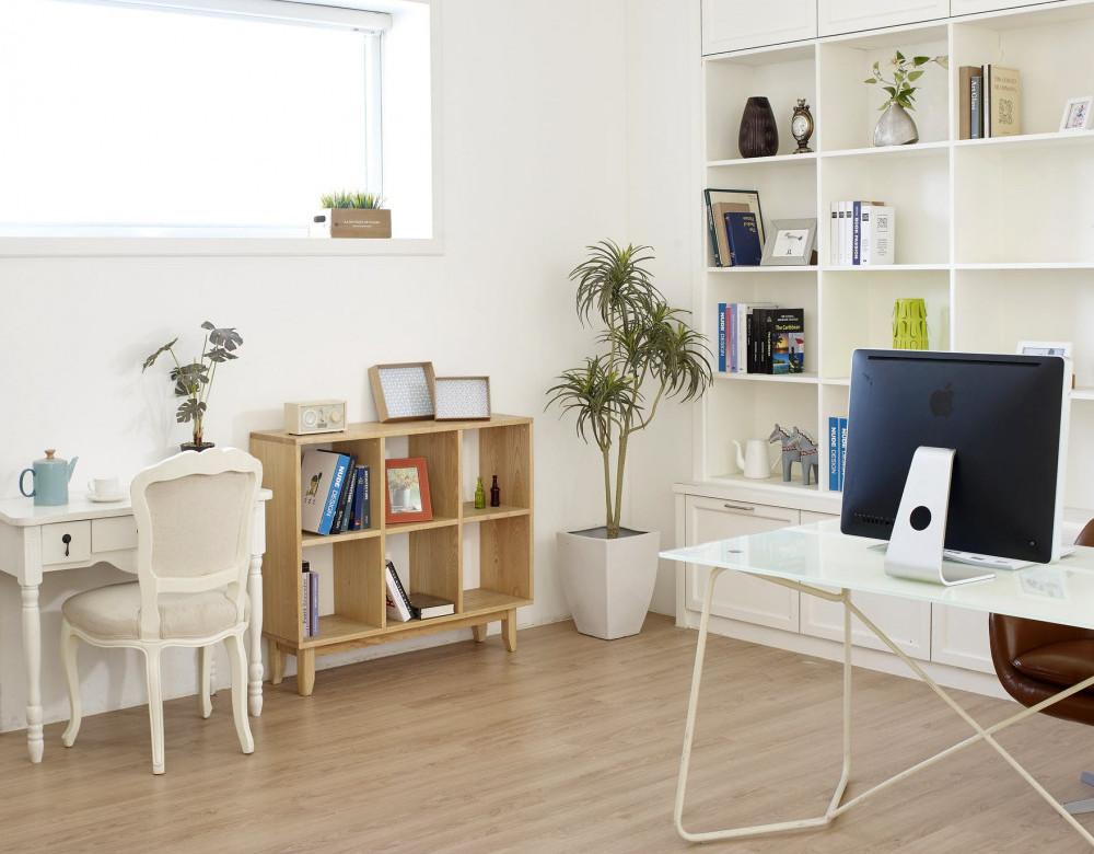 Indoor plants in interior designing   Your Casa Concept