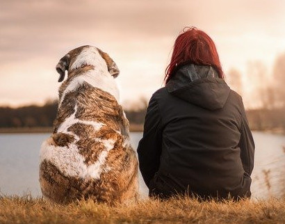 Dog therapy for depresson
