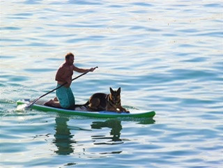 Man Kneeling on Paddle Board with Dog