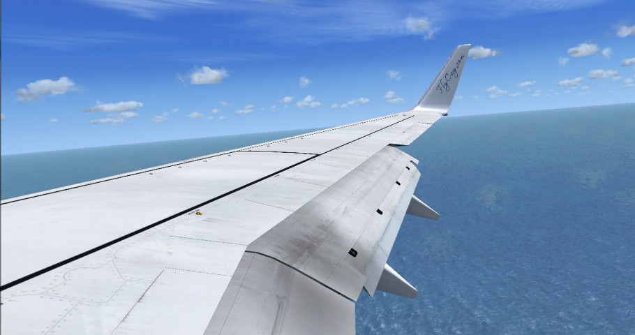 Plane landing in flight simulator