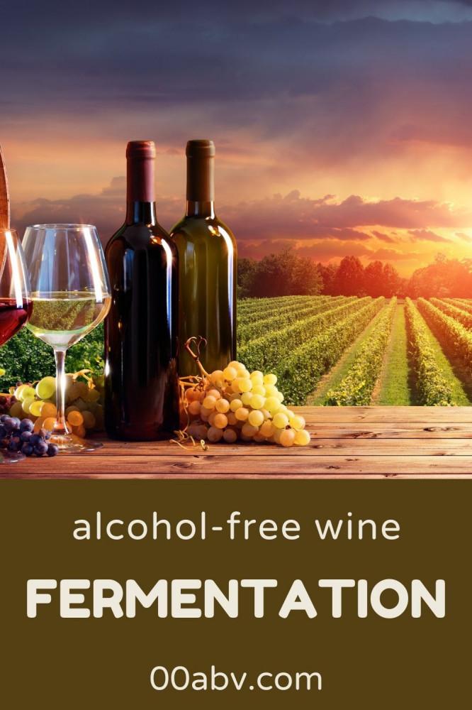 Non-Alcoholic WIne and Fermentation