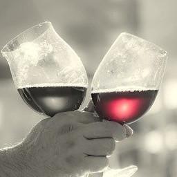 Wine Glasses have got bigger