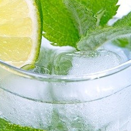 Alcohol Free Gin and Tonic