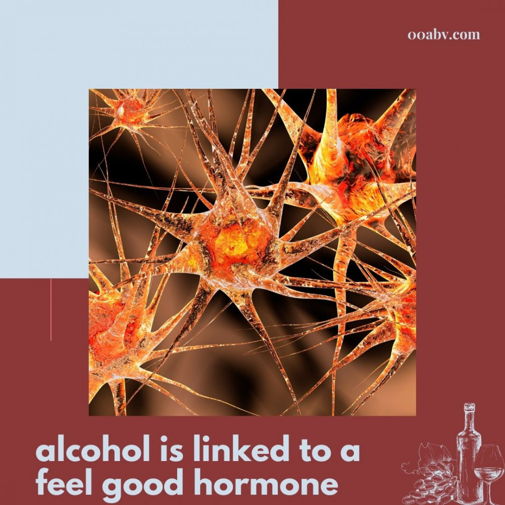 Alcohol is linked to a feel good hormone