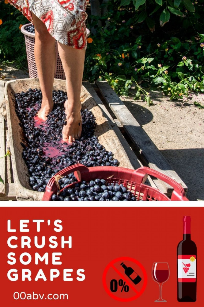 Crushing Grapes for Alcohol Free Wine