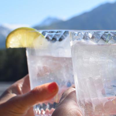 Aldi Alcohol Free Gin
