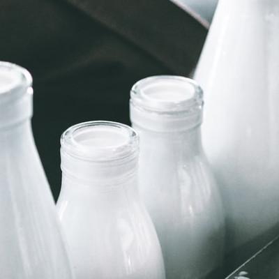 Louis Pasteur Milk and Alcohol