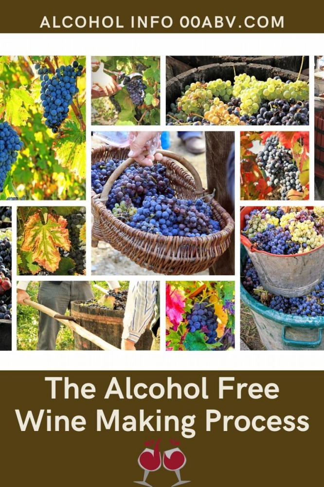 The Alcohol Free Wine Making Process