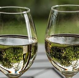 social wine drinker
