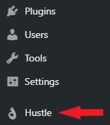 Hustle on WordPress
