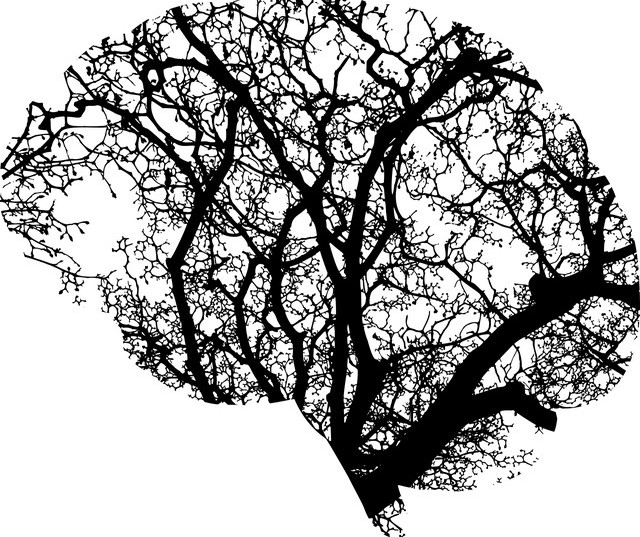 A black and white image of a tree shaped into a human brain
