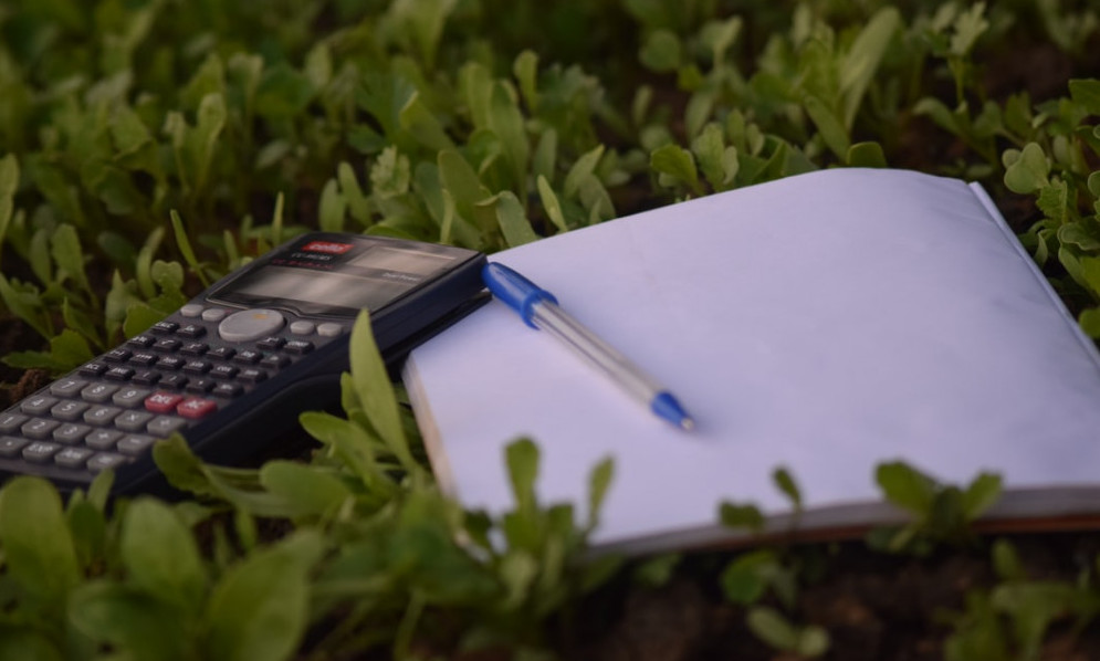 A-calculator-pad-and-blue-pen-resting-on-green-foliage
