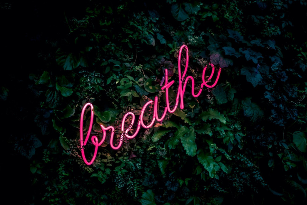 A pink neon 'breathe' sign amongst green leaves