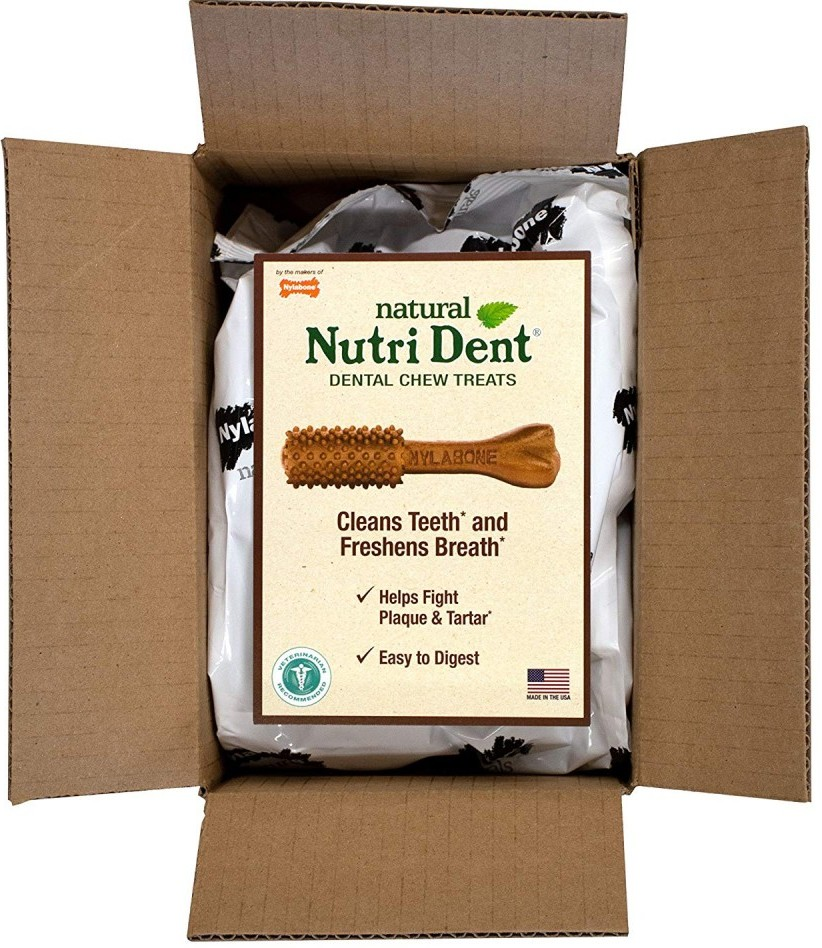 How to Clean a Dog's Teeth - Tips for Husky Dental Care - Nylabone Natural Nutri Dent Dental Chews