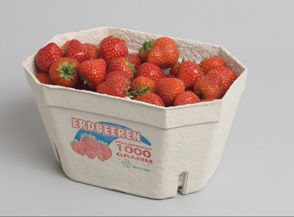 pulp tray strawberry packaging