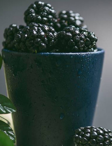 black berries