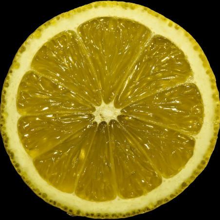 Sensory Processing Disorder - SPD - lemon