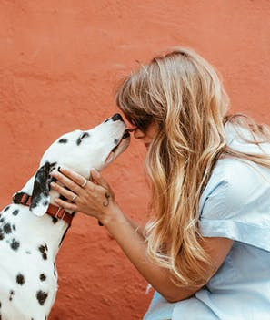 7 reasons your dog kisses you